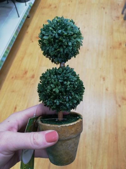 Cute Little Topiary Trees